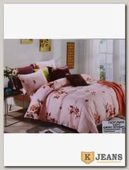 Комплект постельного белья ЕВРО Aimee 030-311