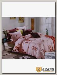 Комплект постельного белья 2-х спальный Aimee КПБС-020-378