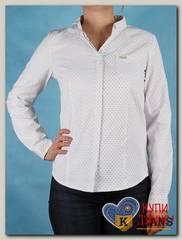 Блузка женская Darerny D2063