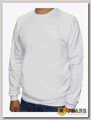 Толстовка-джемпер (осень) без капюшона белая