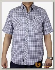Рубашка мужская Sainge 953A-5