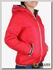 Куртка для девочки Dont Forget 122-4